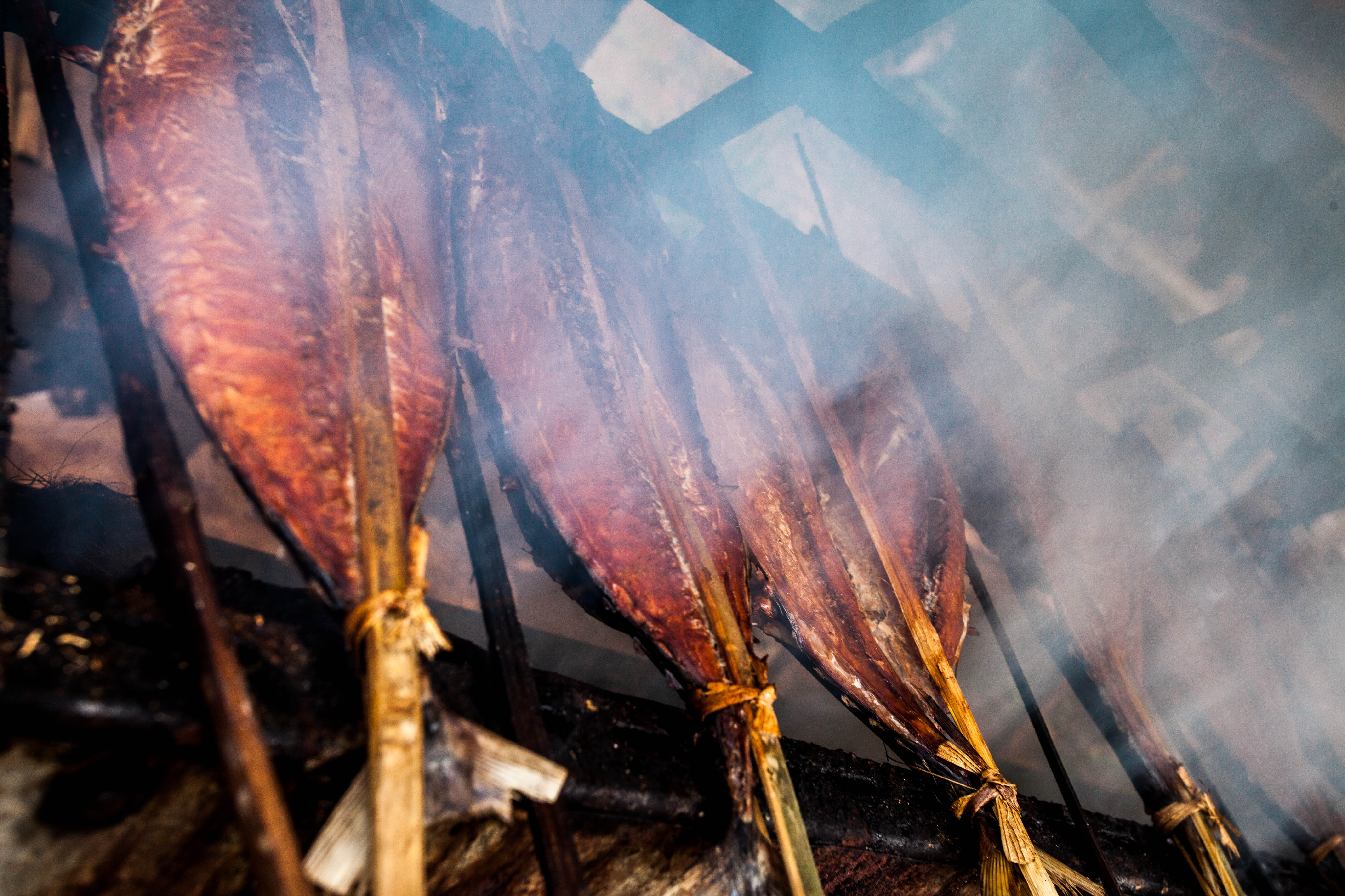 smoked skipjack tuna tied onto wooden poles, smoke obscures half of the picture