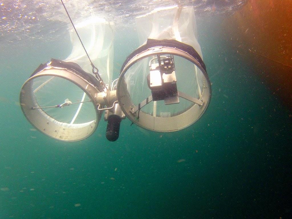 nets underwater