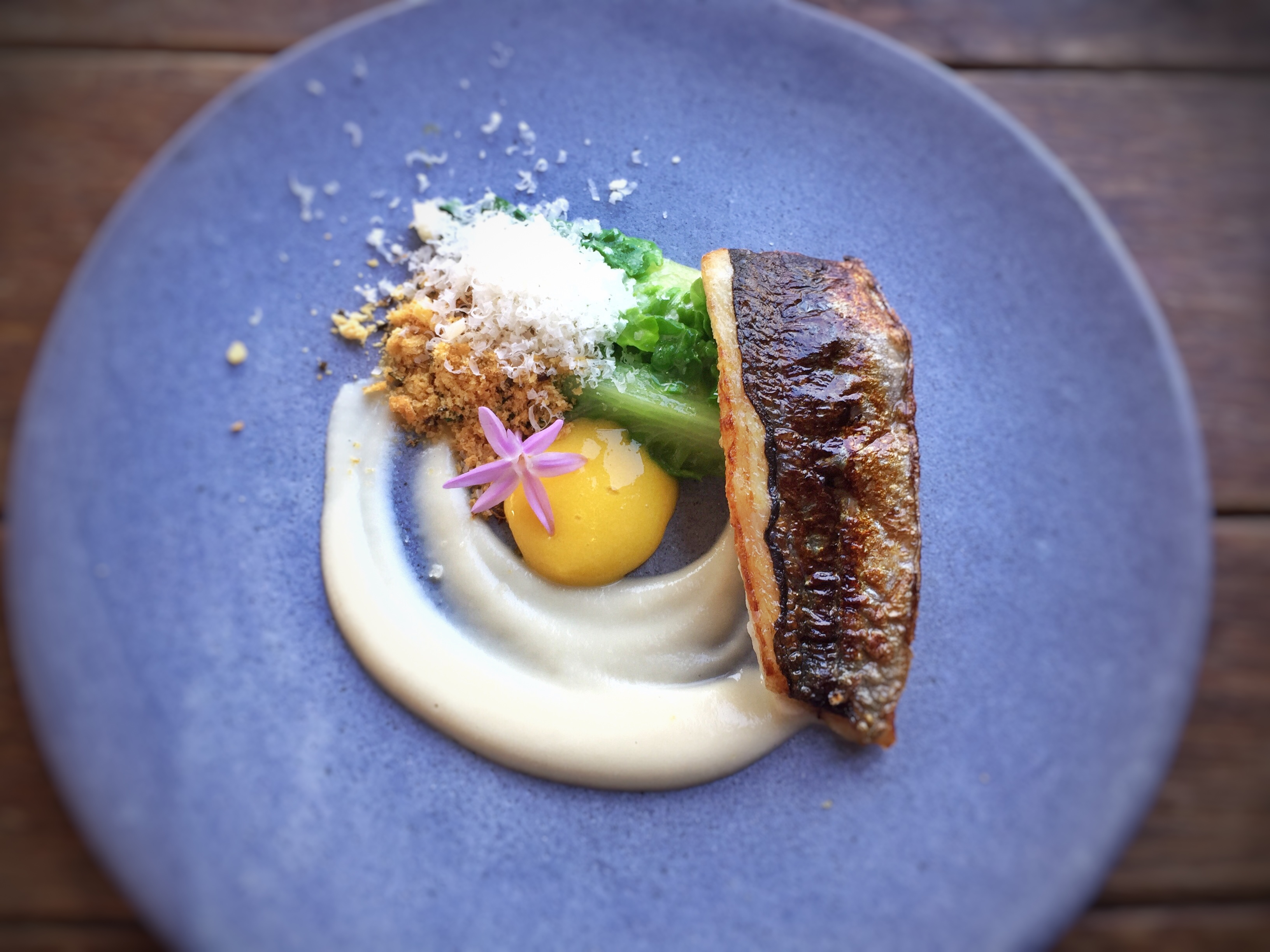 Jack mackerel fillet with egg yolk, creamy sauce, and romaine lettuce garnish