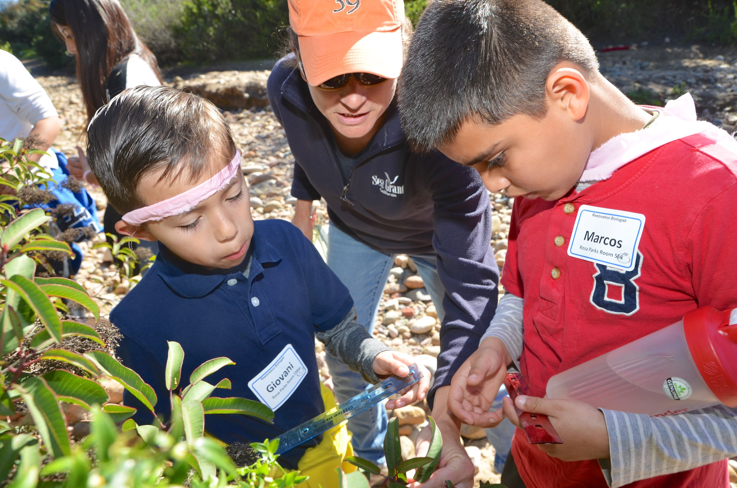 Theresa Talley, center, shows schoolchildren how to measure a plant. Credit: Dennis Wood
