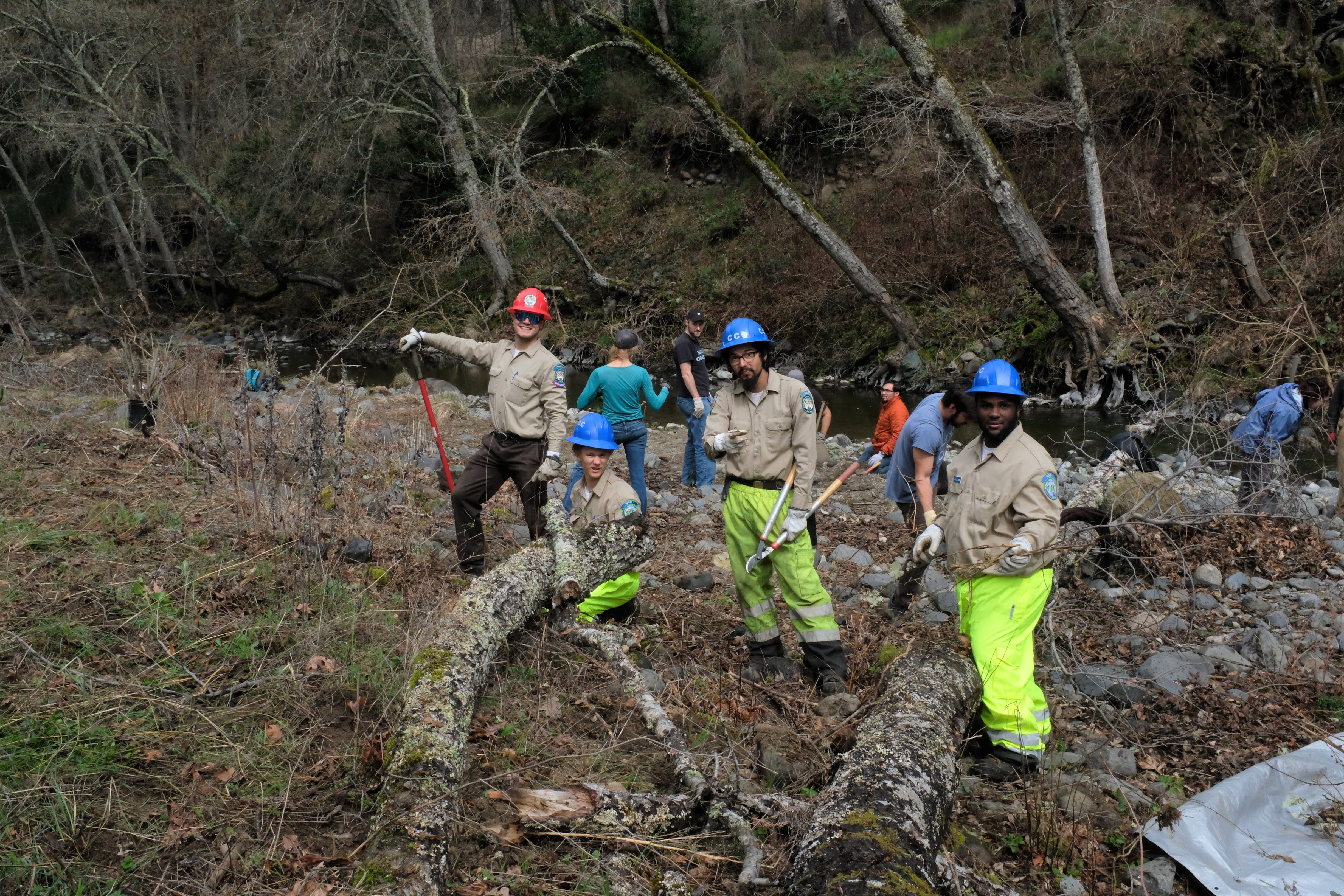 California Conservation Corps members from Ukiah removing invasive plants with style.