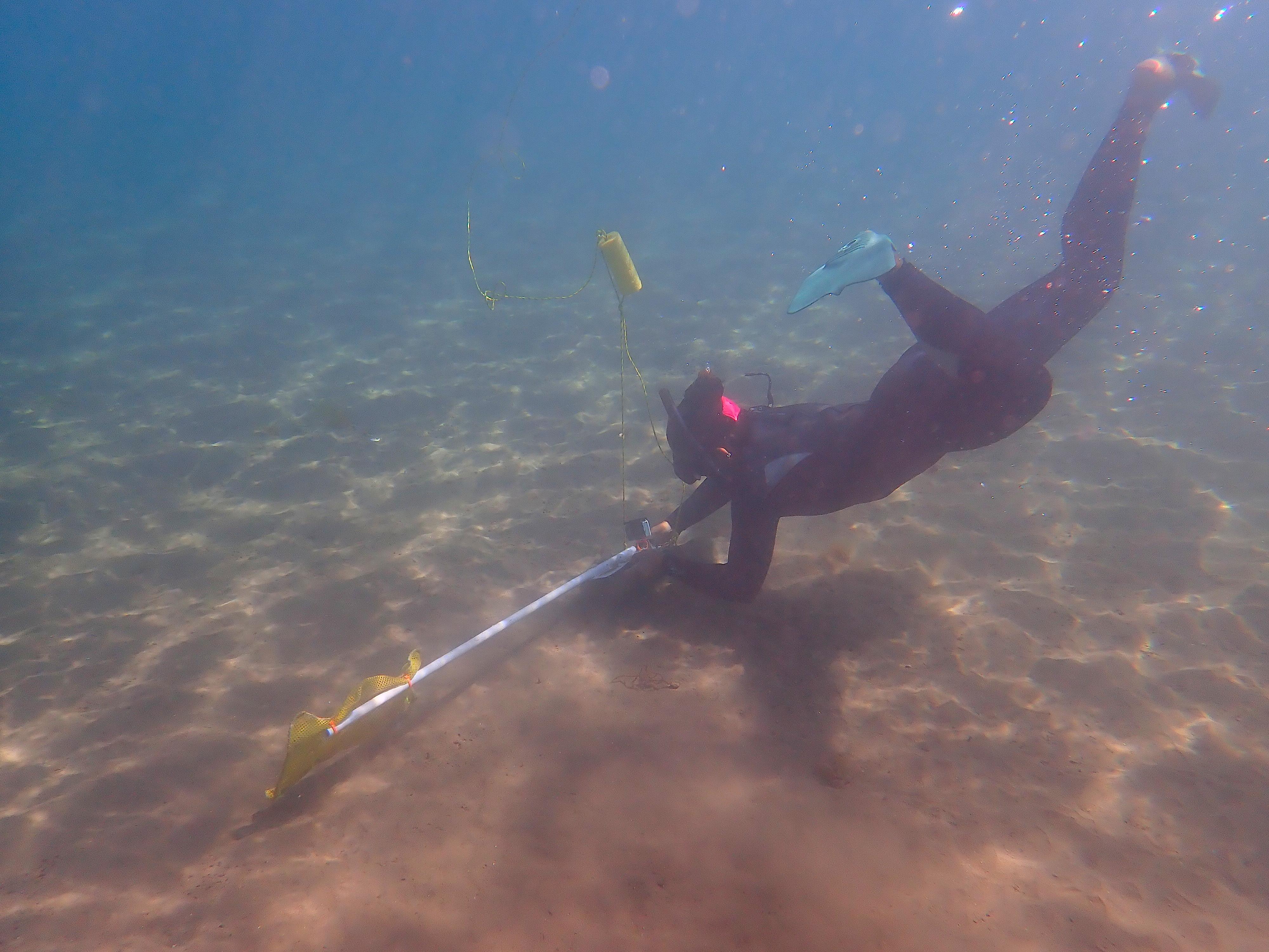 underwater science