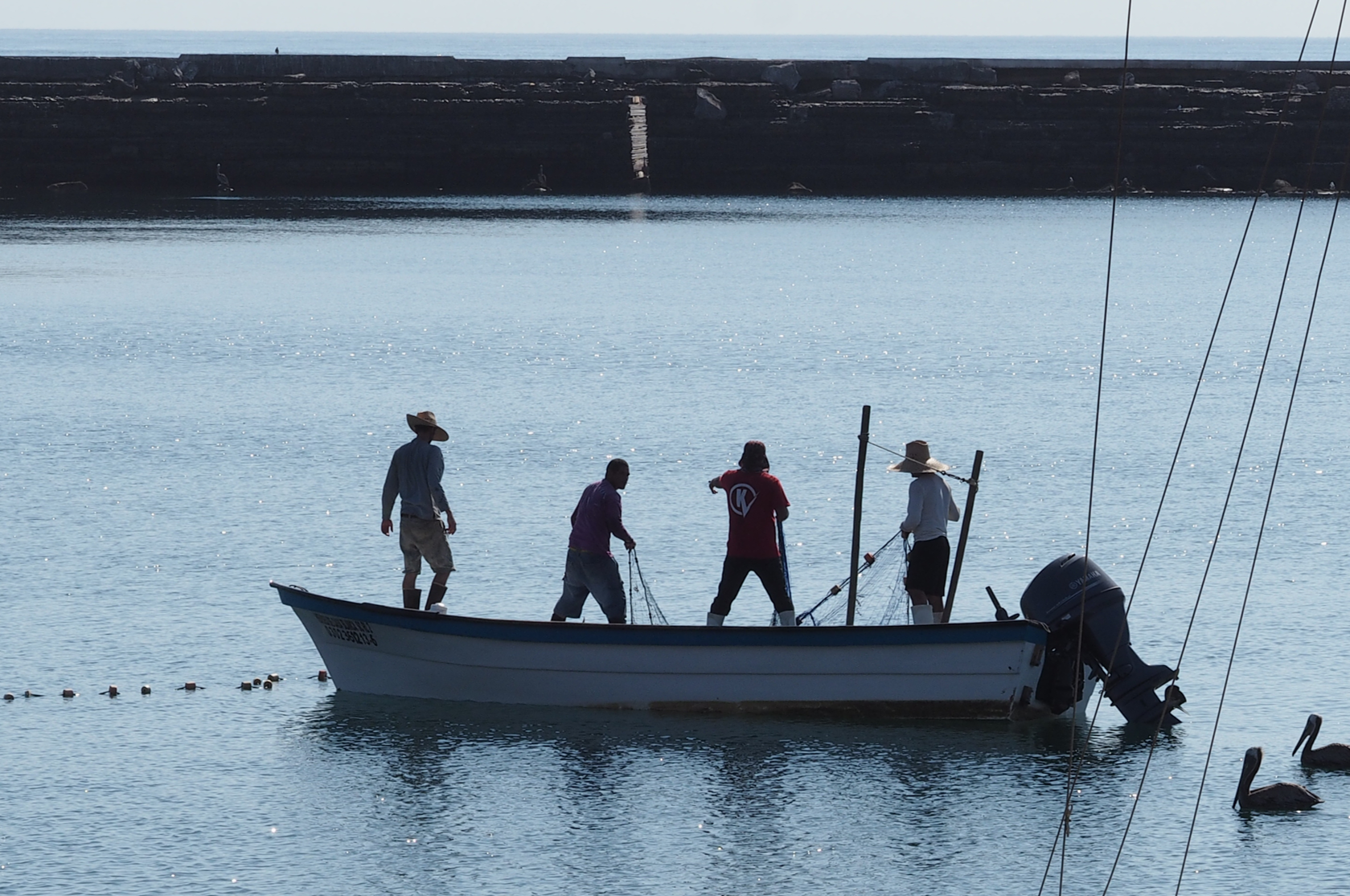 Fishing for answers with small-scale fishermen down in Baja California