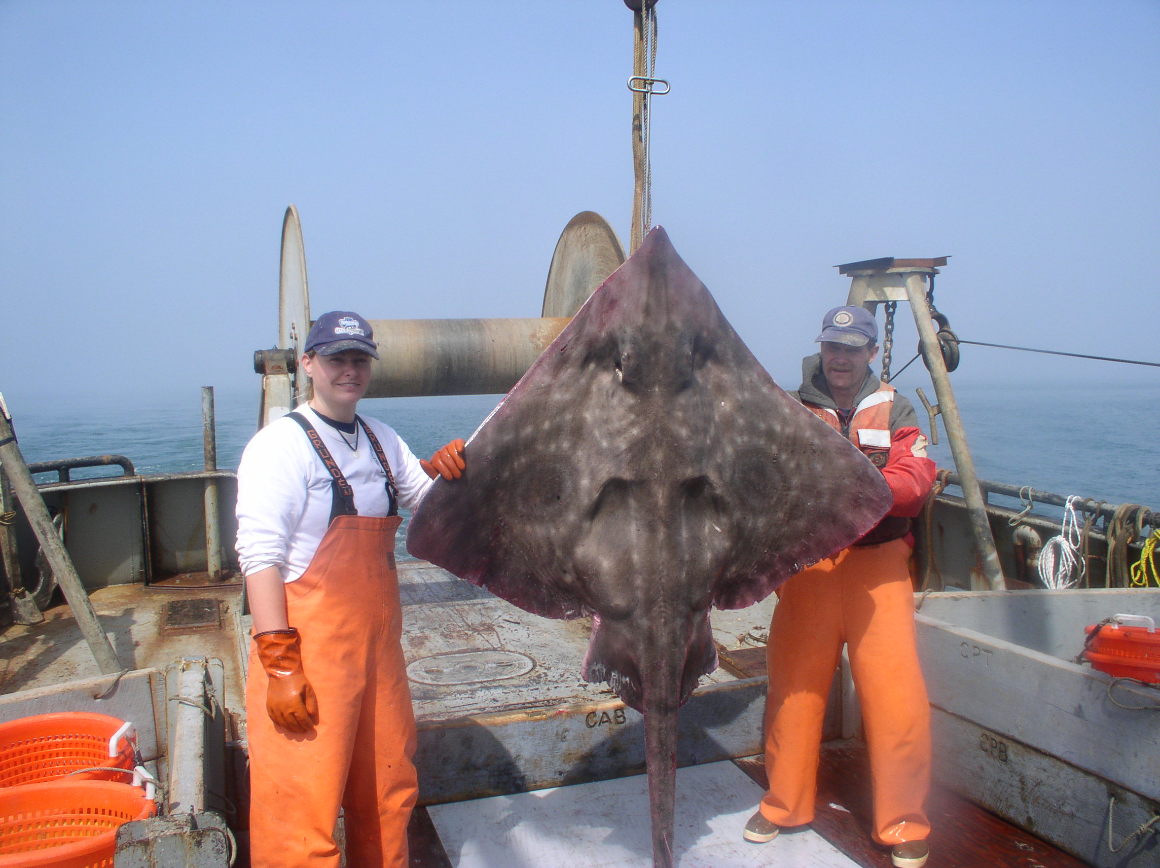 two fishers holding up a big skate