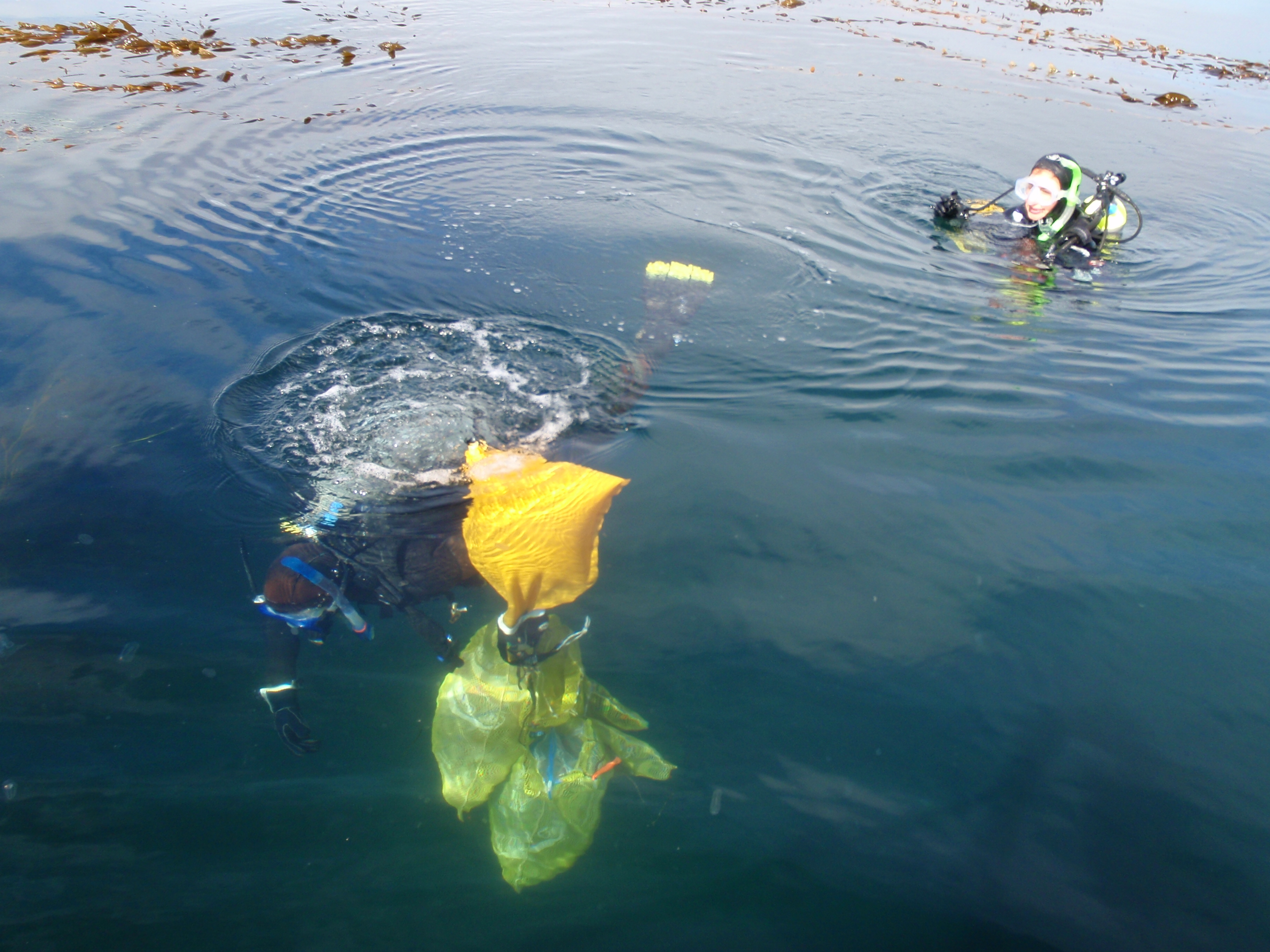 Lift bag of cobbles collected by divers to be processed