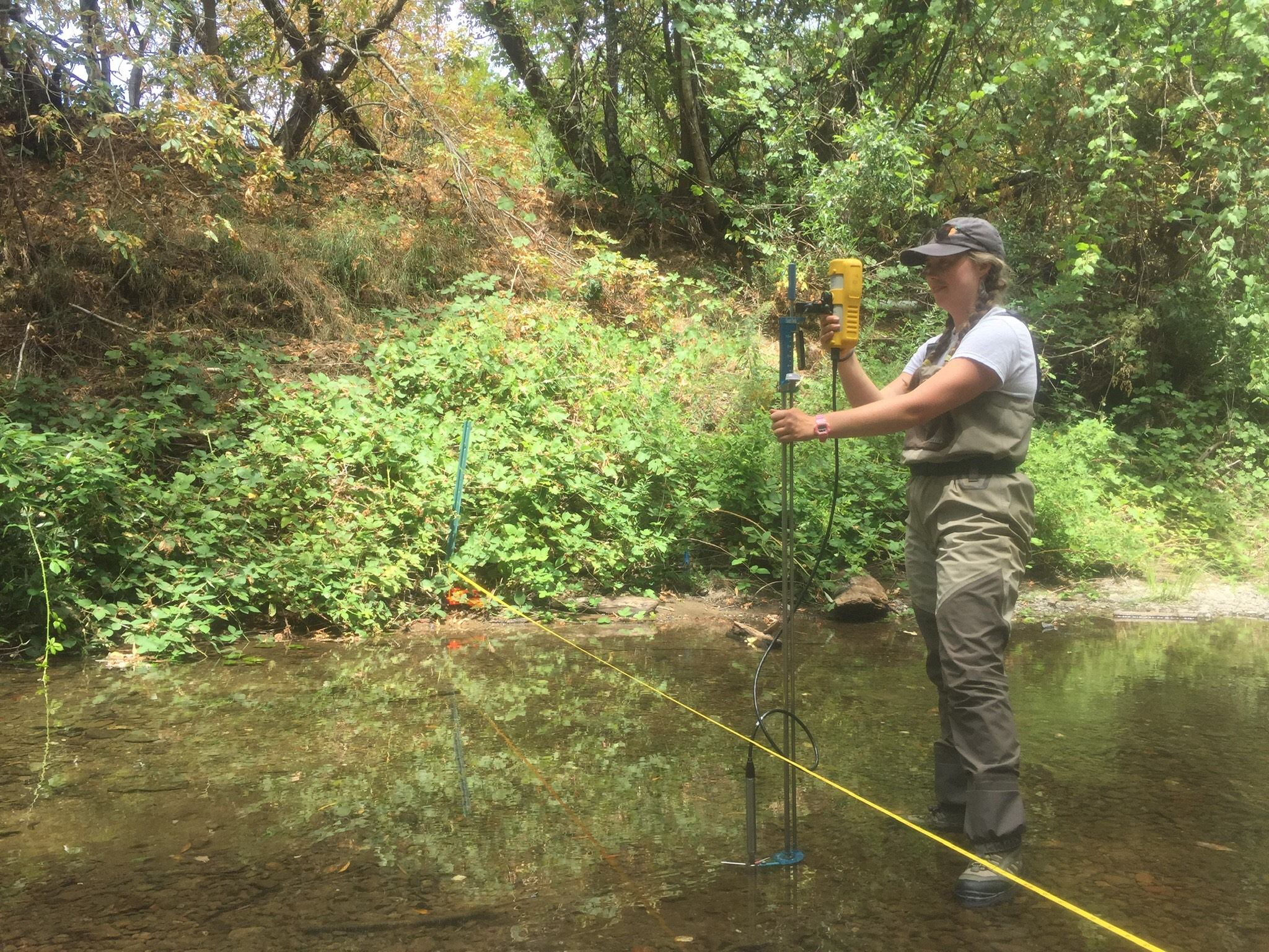 Measuring the discharge on Mill Creek. Summer base flows here are commonly less than one cubic foot per second. It's amazing how little water it takes to keep things flowing and salmon and steelhead alive in these small streams! Photo by Weston Slaughter.
