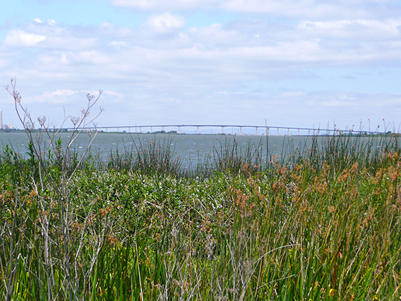 The Antioch Bridge as seen from Big Break Regional Shoreline. Credit: J. Duryea