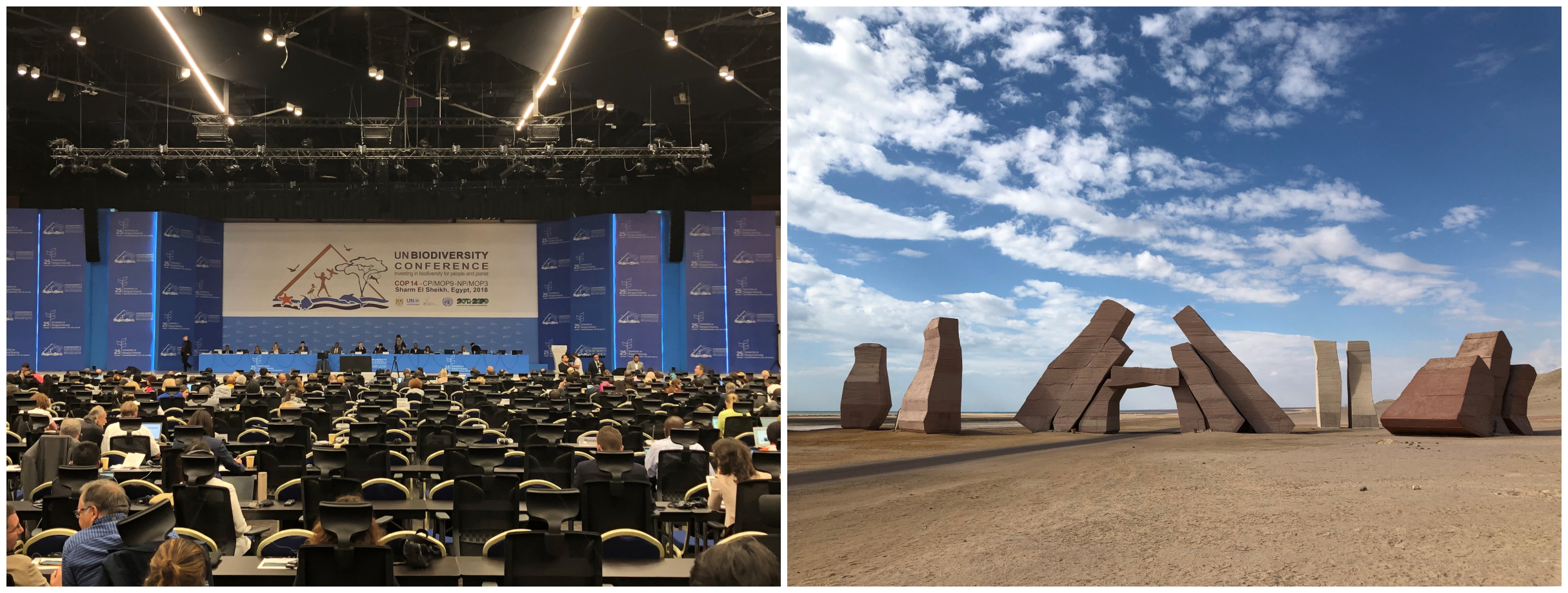 Images of United Nations biodiversity conference in Sharm El Sheikh, Egypt and Ras Mohammed National Park