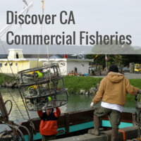 Discover CA Commercial Fisheries
