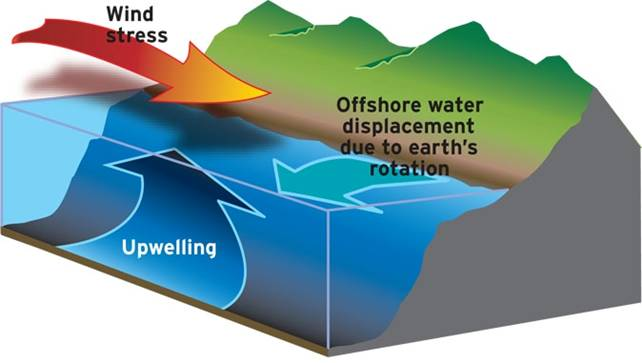 diagram of how wind causes upwelling