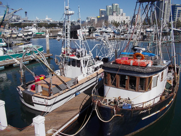 Two fishing boats on dock