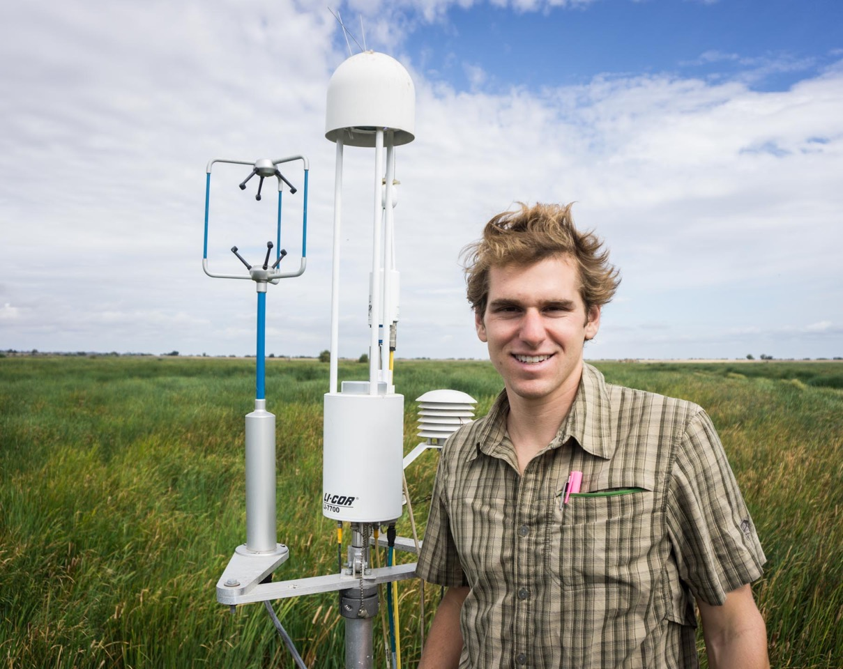 Kyle Hemes on the eddy covariance tower at Twitchell Island. The sensors continuously measure the exchange of greenhouse gases and water between the wetland and the atmosphere. Credit: Dennis Baldocchi