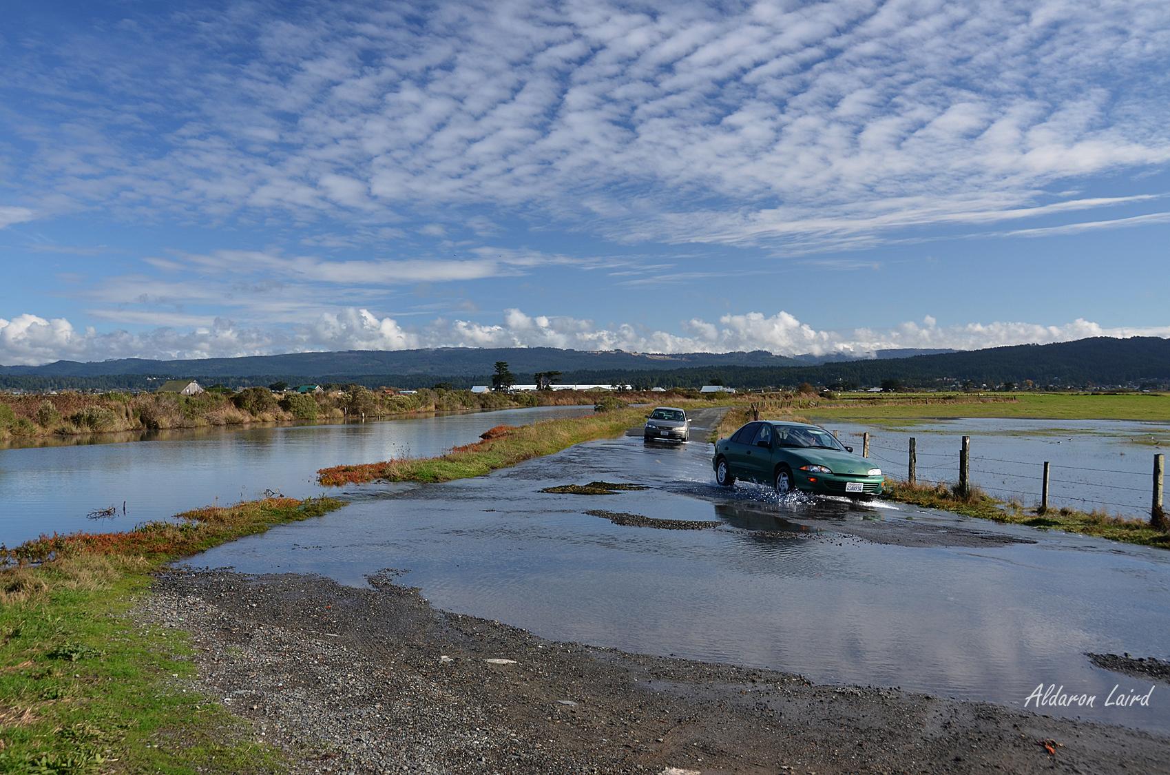 Humboldt Bay King Tide, MRS.