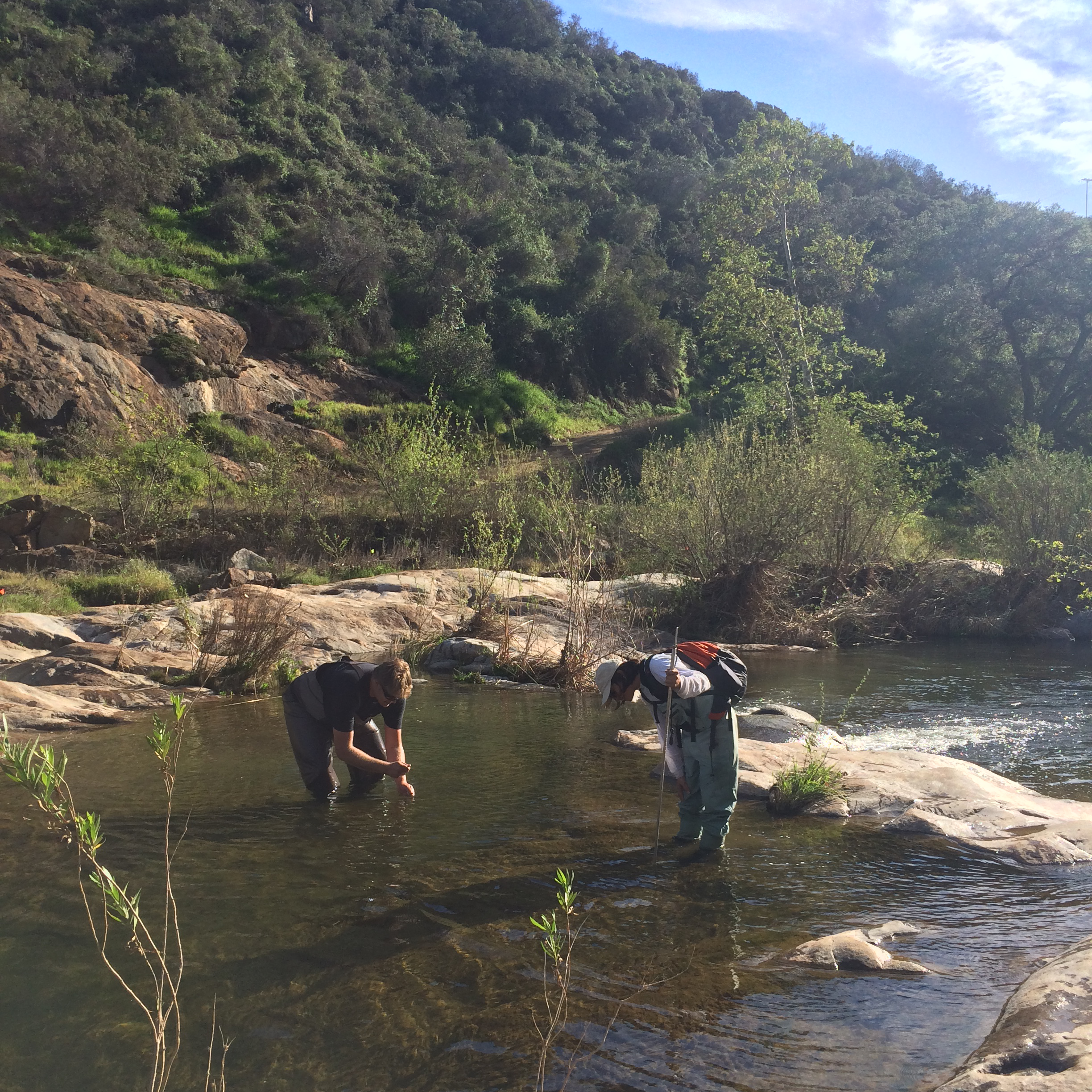 Justin Vanderwal and Mayra Molina during a bioassessment (measuring water level and evaluating the habitat). Image: Susanne Theroux