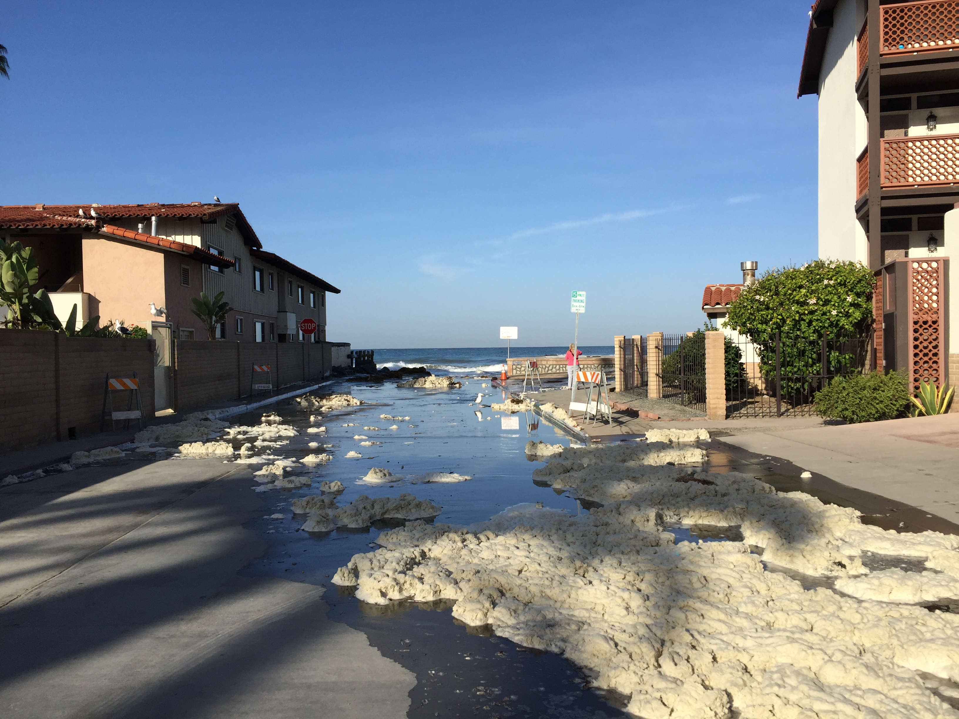 flooded street in La Jolla