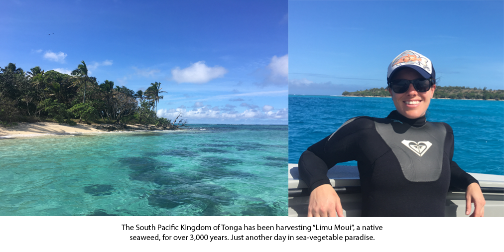 Heather Kramp in Tonga