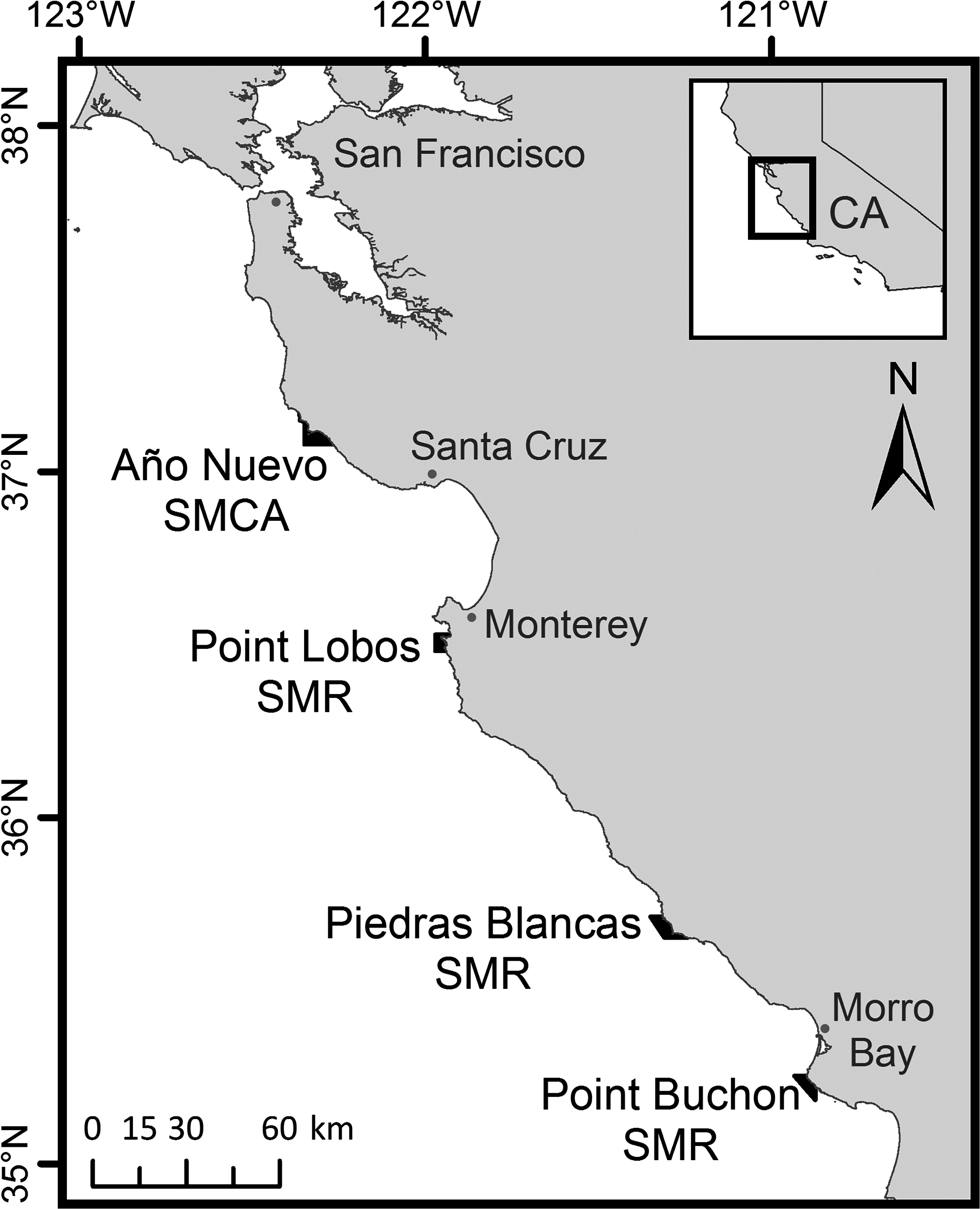 Location of the four study areas in central California.  Año Nuevo State Marine Conservation Area (SMCA), and the Point Lobos, Piedras Blancas, and Point Buchon State Marine Reserves (SMRs).