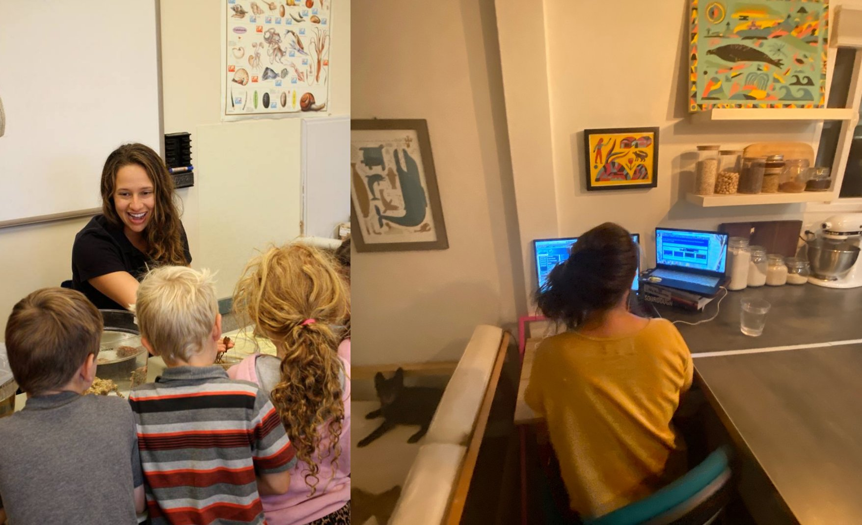 A side-by-side comparison between hands-on marine science education (pre-covid), and what at-home virtual STEM education looks like.