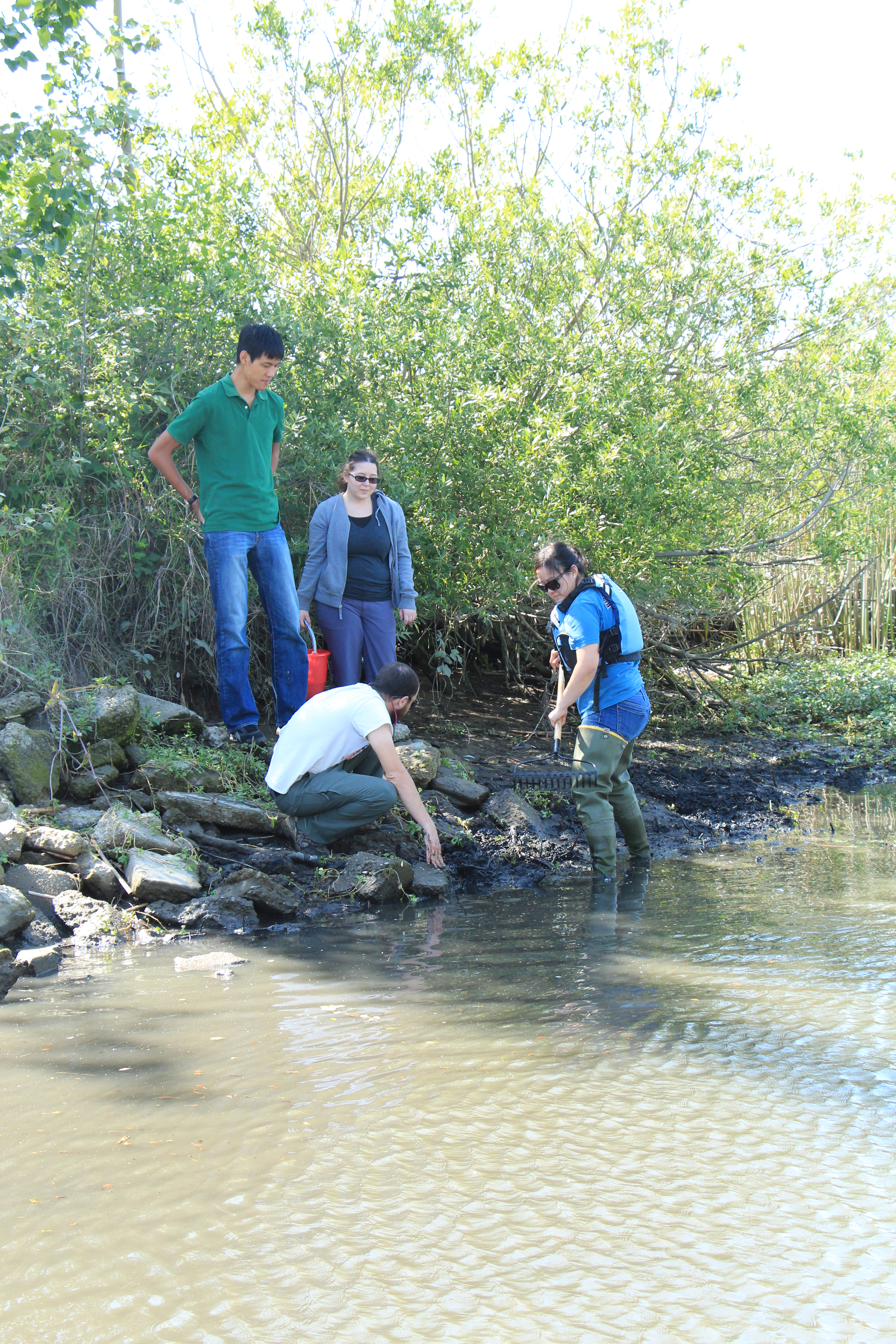 State Fellow Monica Oey and other Delta Science Council members collect specimens in the Delta.