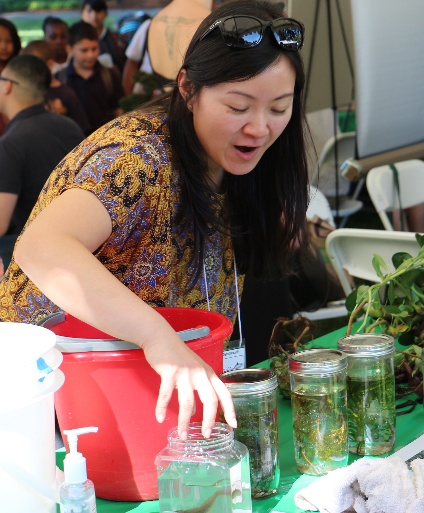 Monica Oey arranges the Delta Science Council display at State Scientist Day.