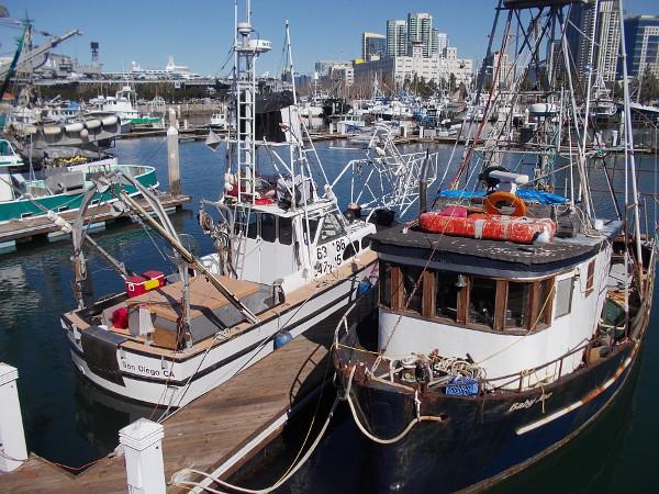 fishing boats on dock