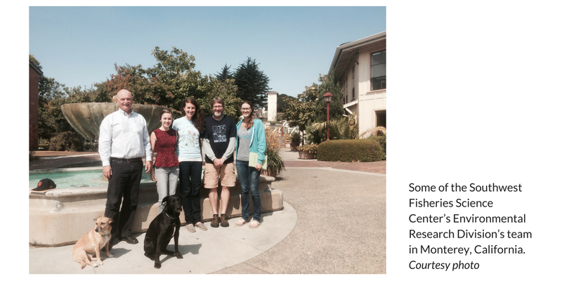 Lindsey Peavey and Some of the Southwest Fisheries Science Center's Environmental Research Division's team in Monterey, California.