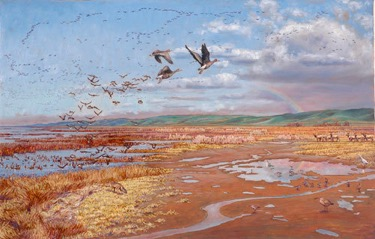 South San Francisco Bay marshes 500 years ago. Image provided by Laura Cunningham.