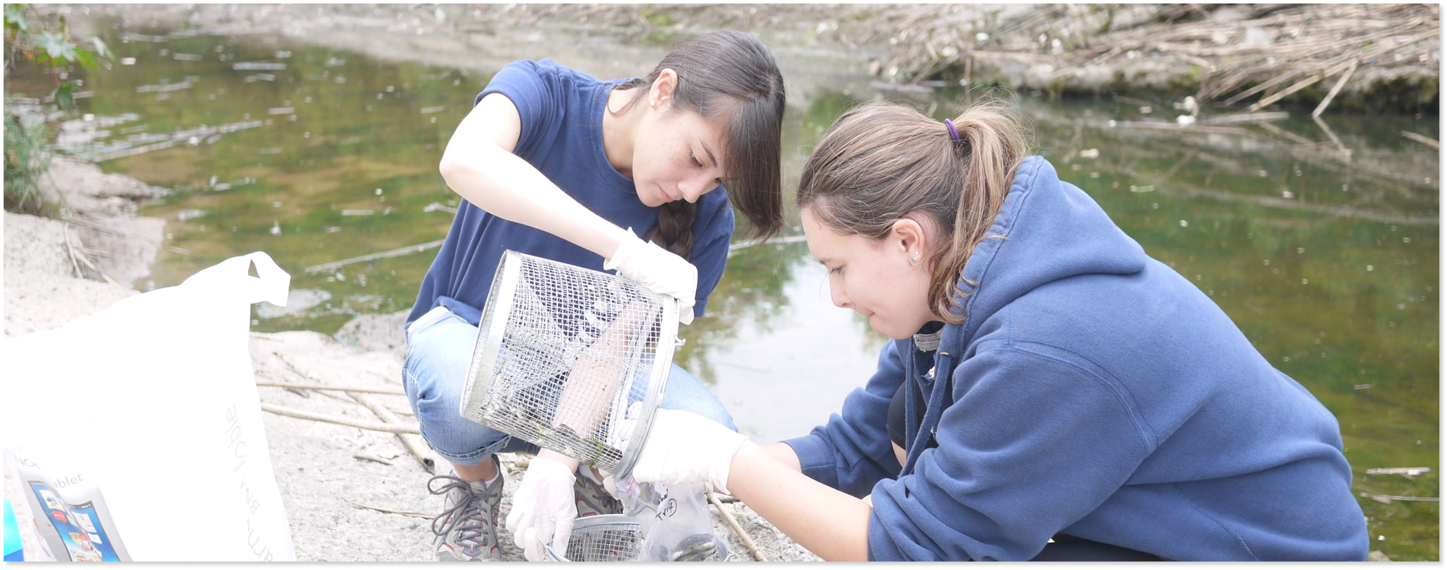 women scientists working in field