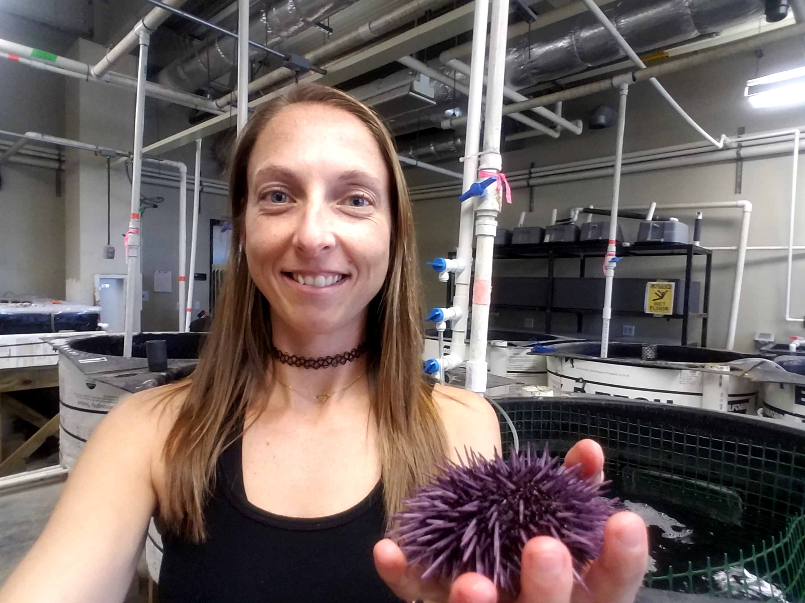 Renee Angwin with a sea urchin.