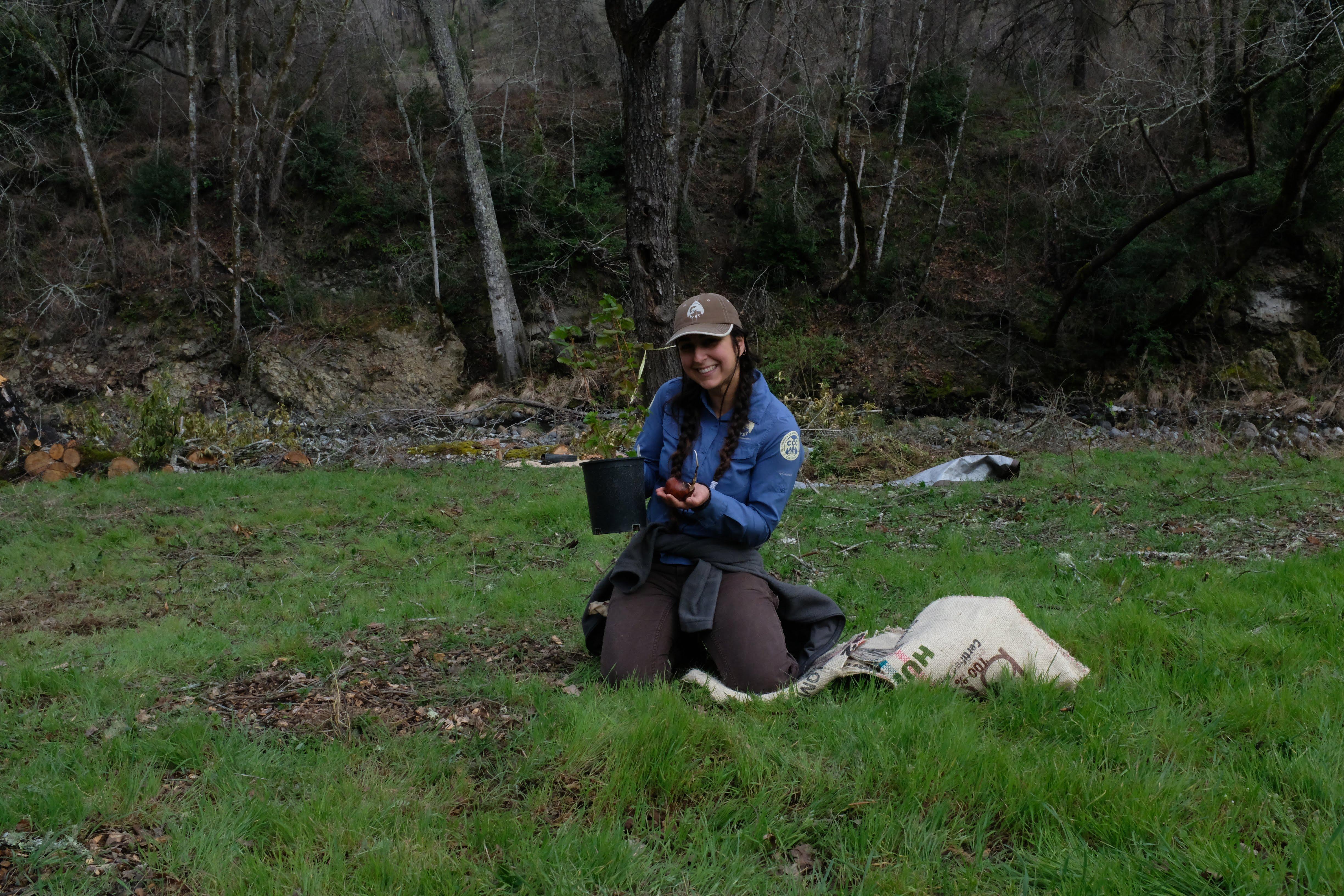 WSP member Shayda Abidi demonstrates how to plant California buckeye seeds and seedlings