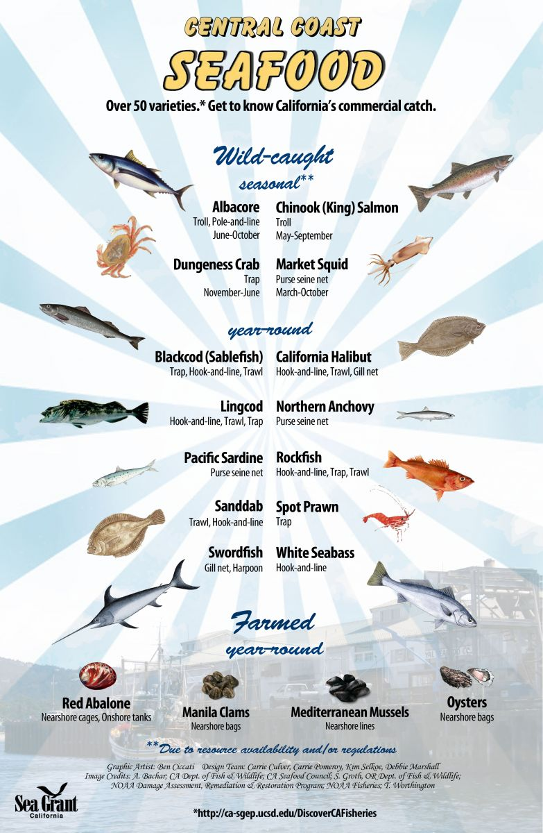 Central Coast seafood poster