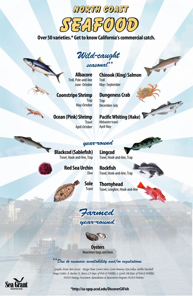 North Coast seafood poster
