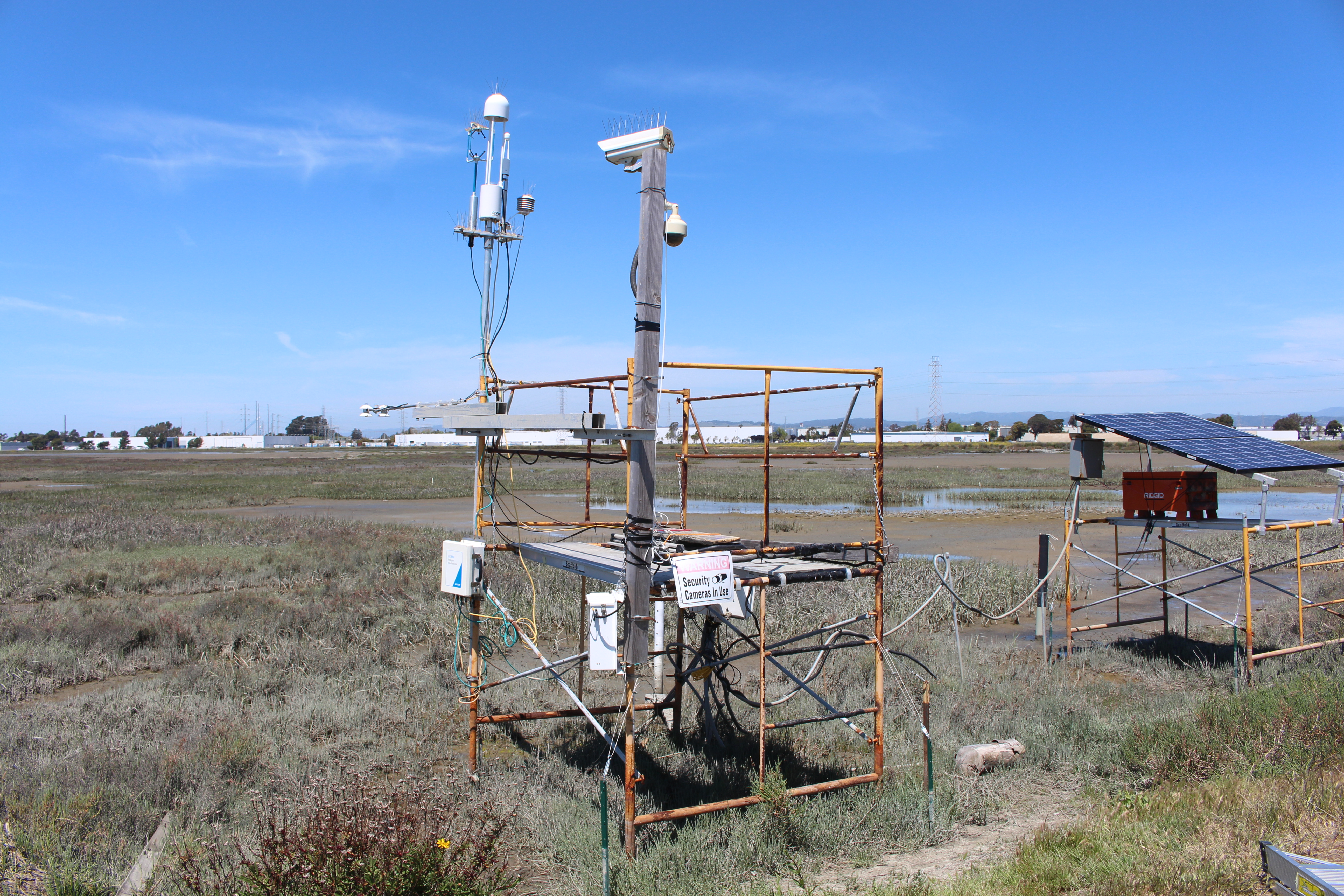 contraption in a wetland