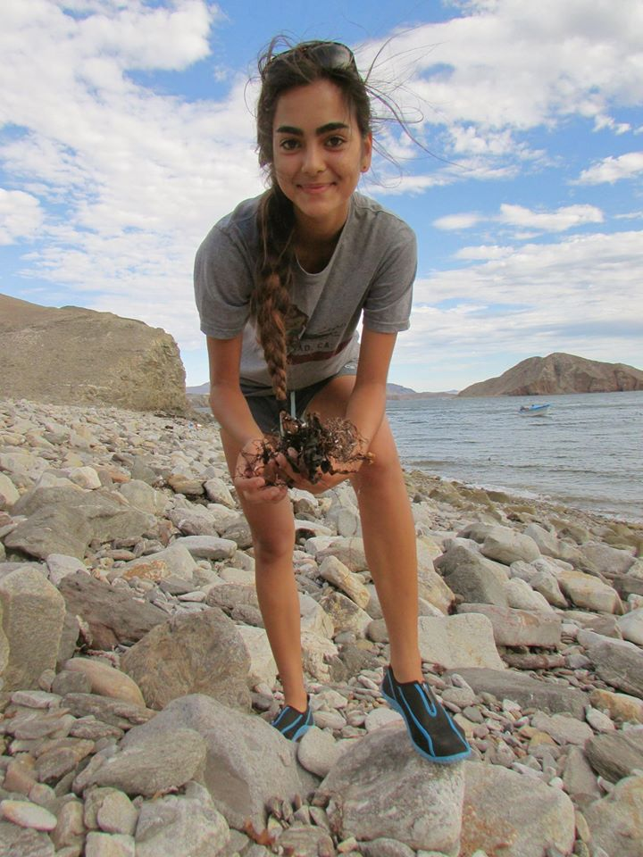 A photo of myself during my first ever research experience in Bahia de los Angeles as part of Ocean Discovery's Bahia program.