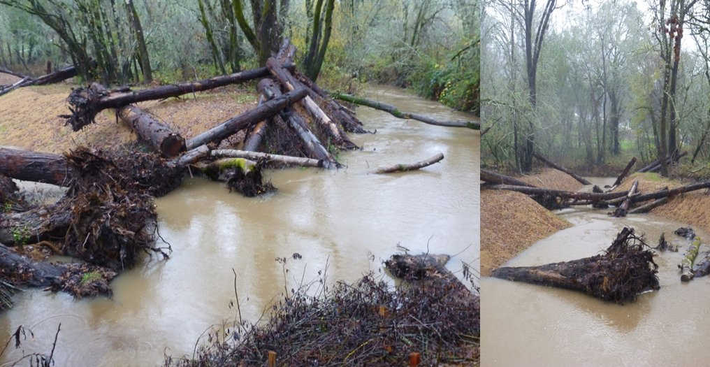 Green Valley Creek off-channel habitat when active at high winter flows