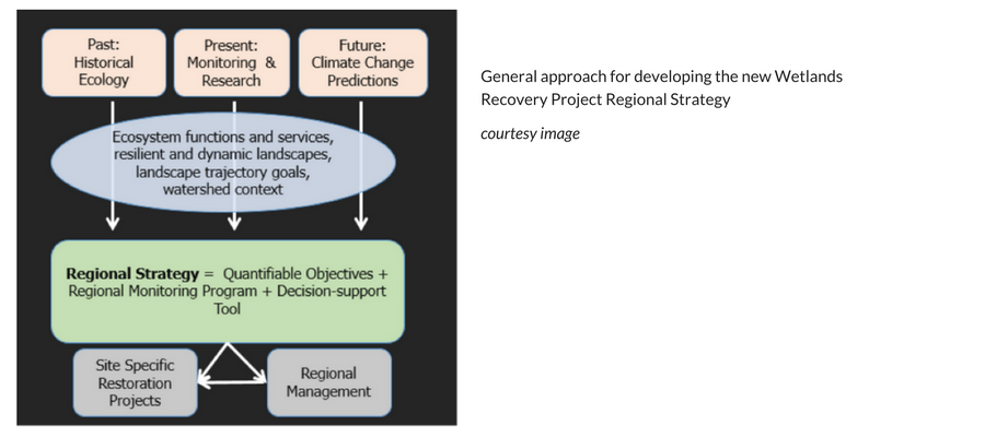 Graphic demonstrating general approach for developing the Wetlands Recovery Project Regional Strategy