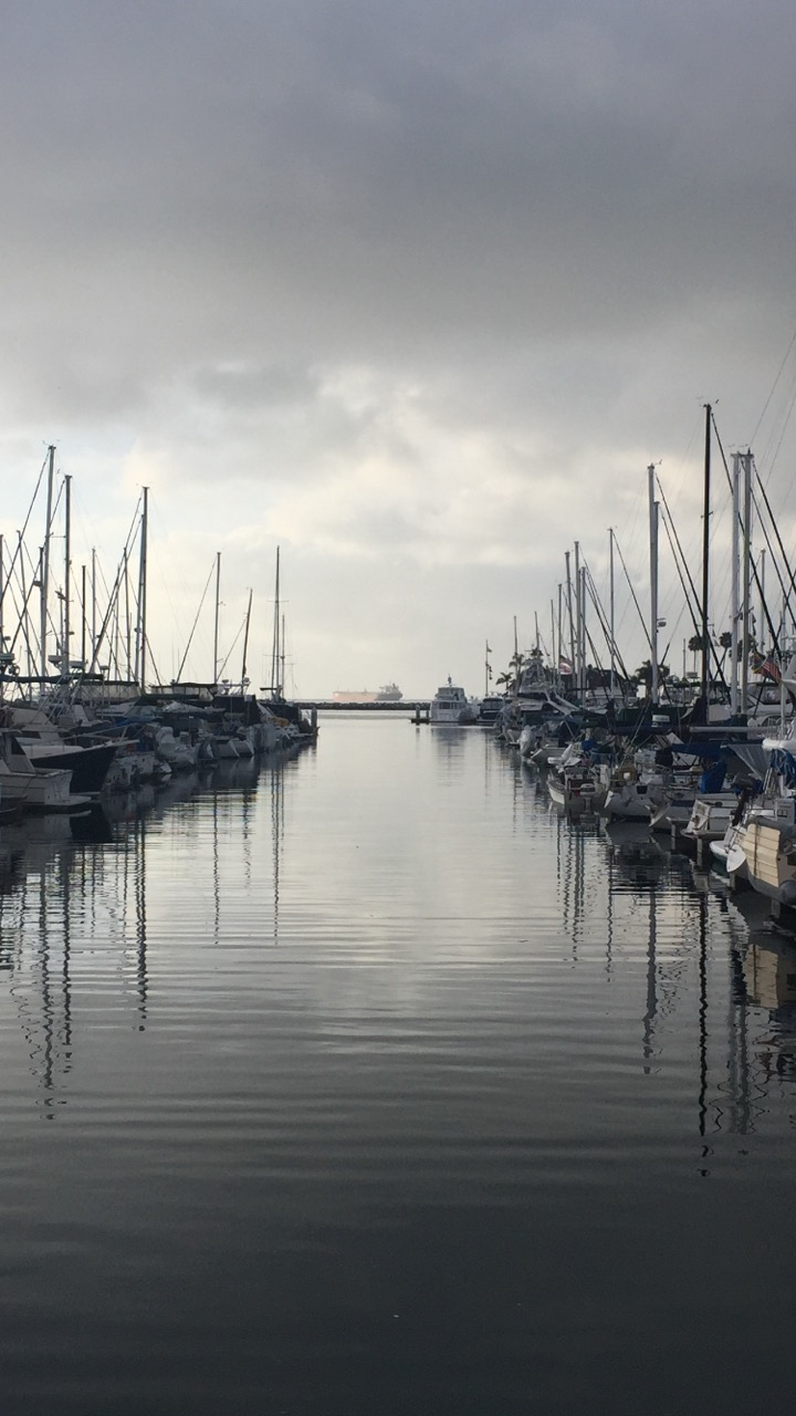 boats in a harbor