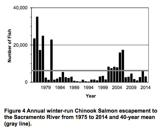 Graph depicting Chinook Salmon escapement to Sacramento River