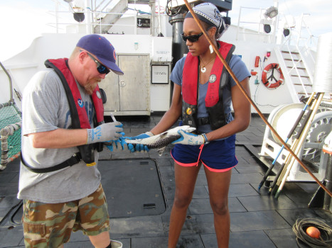 Alexis Jackson holding a baby shark, while another researcher examines it
