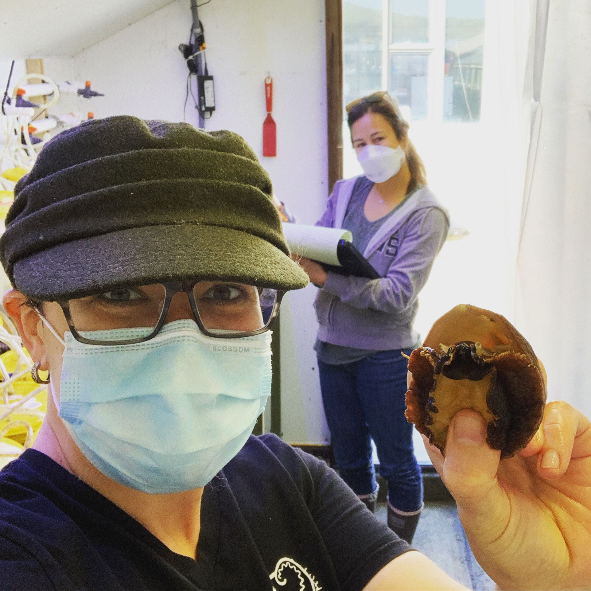 Kristin Aquilino and Shelby Kawana measure white abalone in a CA Sea Grant-funded project