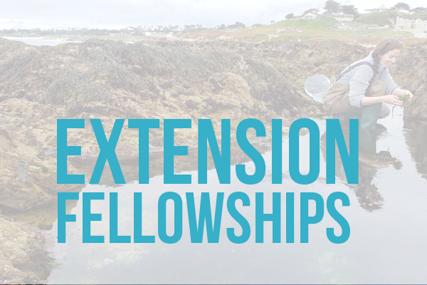 extension fellowships woman doing science