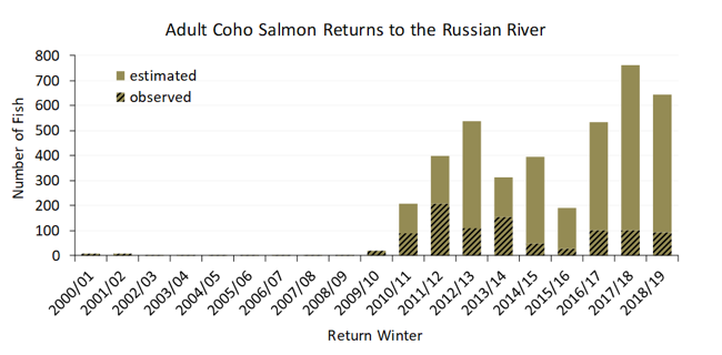 coho graph returns