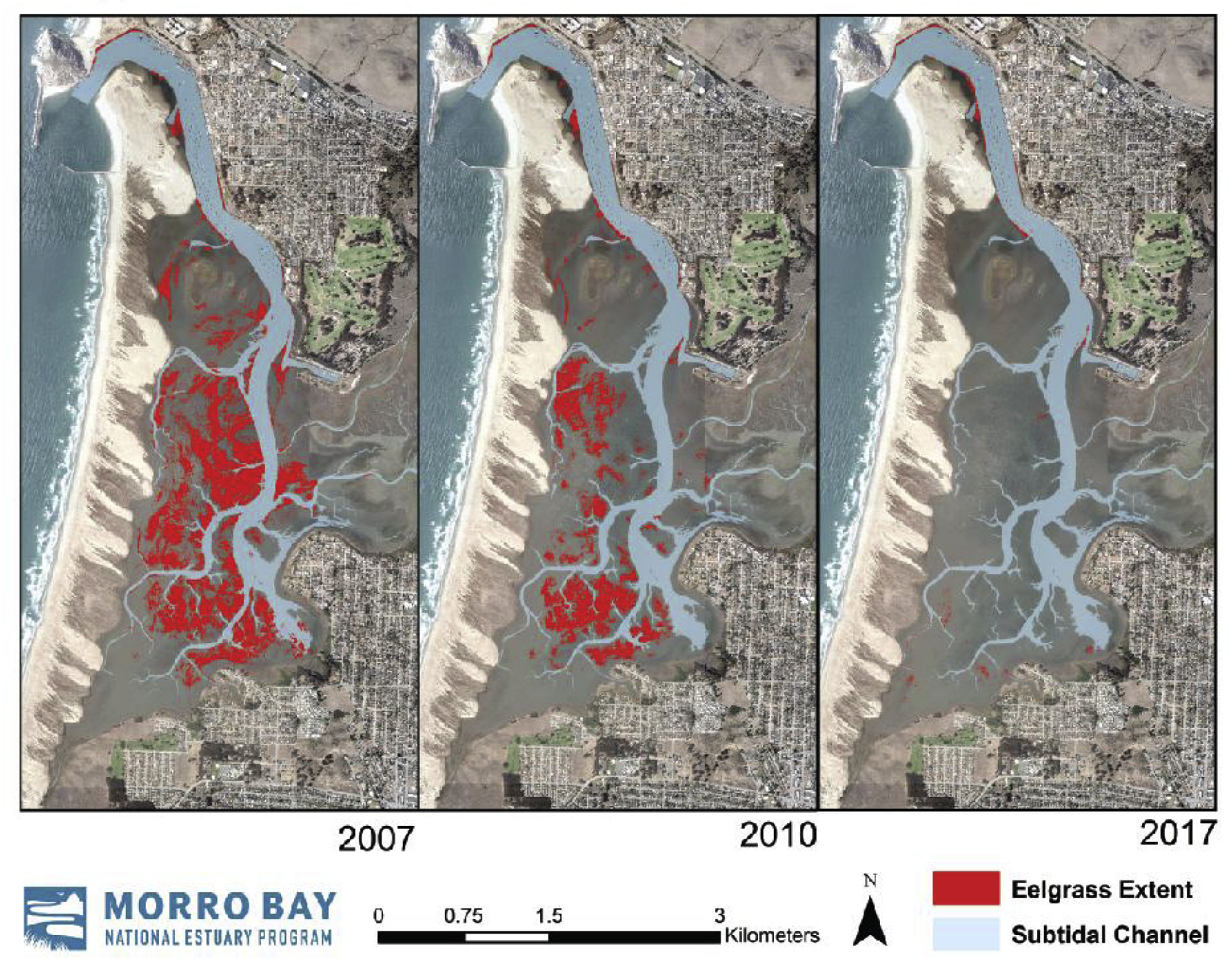 3 maps of morro bay showing dramatic decline in eelgrass extent in 2007, 2010, and 2017.