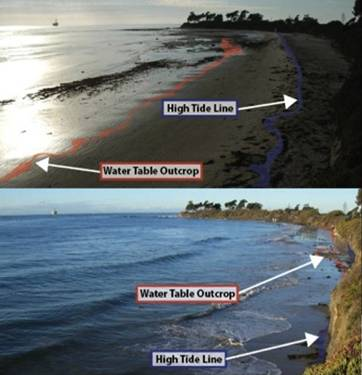 """A couple of moving beach """"landmarks"""" known as the """"high tide line"""" and the """"water table outcrop""""shown here at low tide and high tide can help you locate some characteristic sand dwellers."""