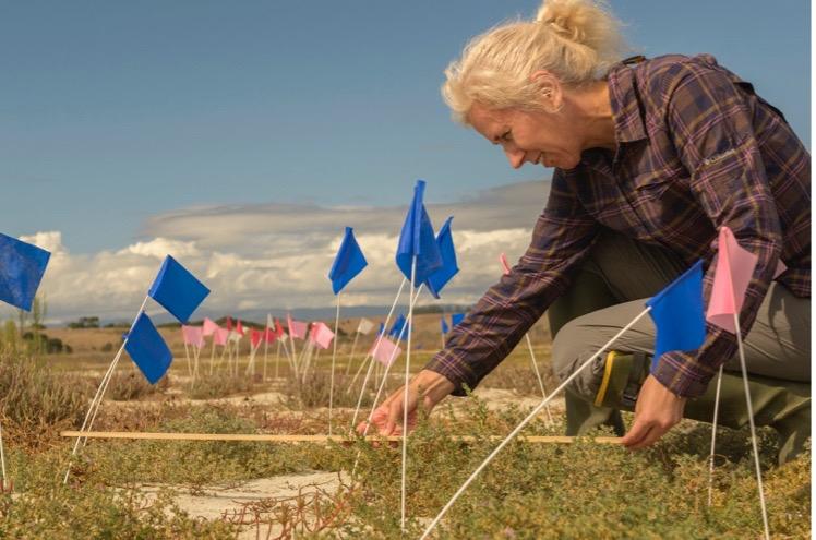 woman measures plants