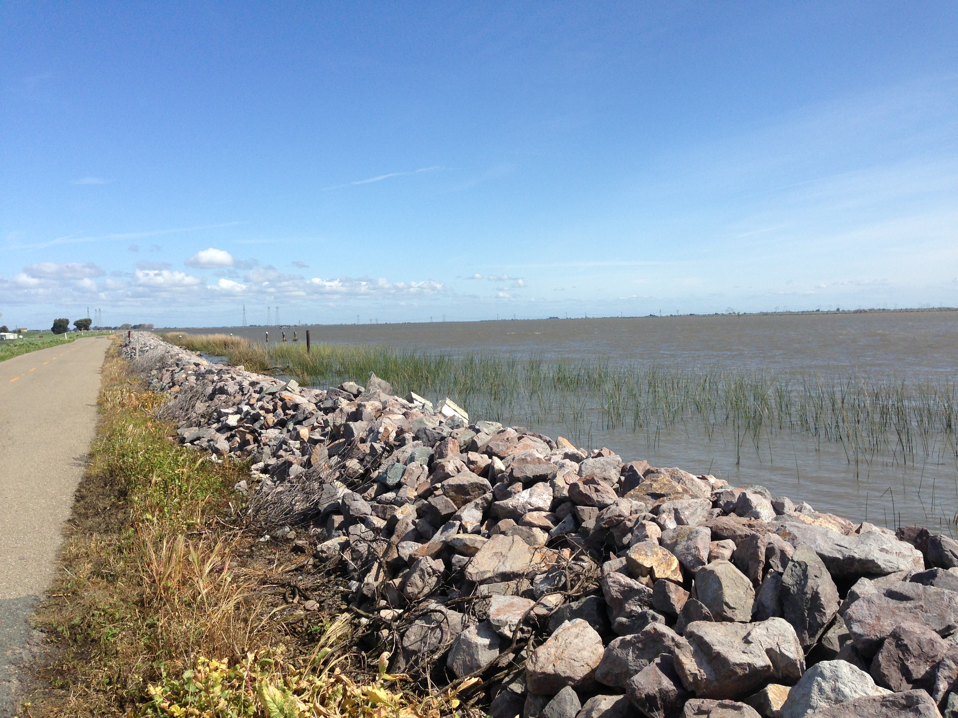 Example of a levee. Photo credit: Pam Rittelmeyer