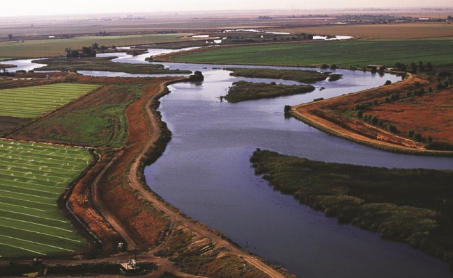 A levee in the Sacramento–San Joaquin River Delta. Image courtesy of the Delta Stewardship Council