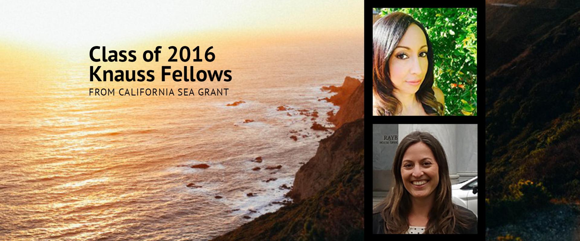 Class of 2016 Knauss Fellows