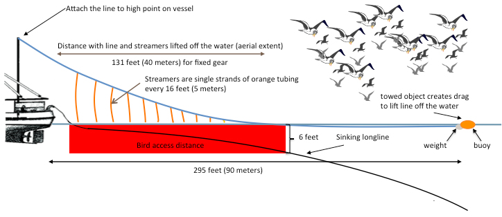The diagram above shows how streamer lines made from orange tubing protect fishing gear and bait from birds. The span of the line and streamers lifted off of the water scares the birds, keeping them away from the baited hooks.