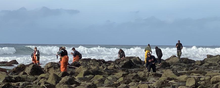 people tidepooling in la jolla